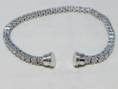 フレッドフォース10用 ブレスダイヤケーブルWG